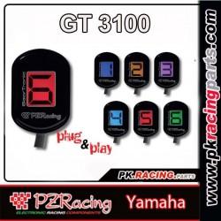 PZ RACING GT3100