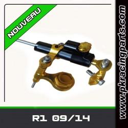 KIT AMORTISSEUR DE DIRECTION R1 09/14