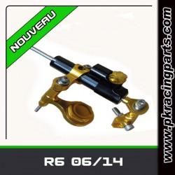 KIT AMORTISSEUR DE DIRECTION R6 06/12
